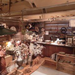 アンティーク雑貨とドライフラワーのお店〖その灯暮らし 岡崎店〗がオープンしました!